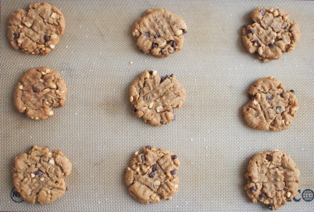 salted peanut butter chocolate chip cookies (grain free, refined sugar free) | bloom & nourish
