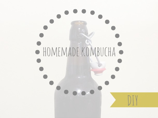 diy homemade kombucha | bloom & nourish